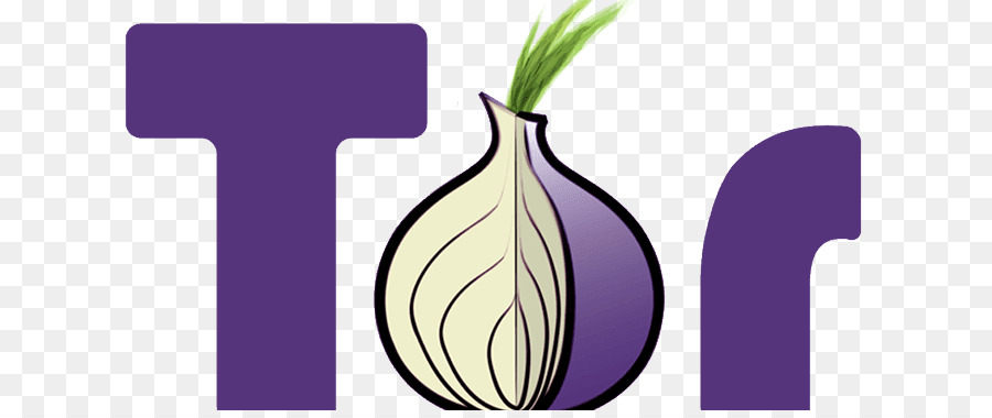 the tor project Another blow to the tor project : one of the tor project's earliest contributors has decided to quit the project and shut down all of tor project to start bug bounty program — get paid for hacking.