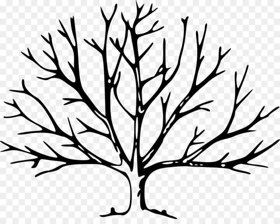 Rama de árbol de la Hoja del Roble Clip art - bayas png dibujo ...