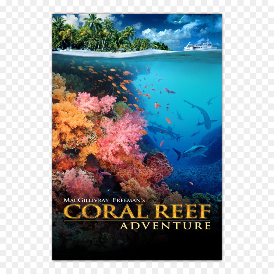 Coral reef imax documentary film coral reef png download 1000.