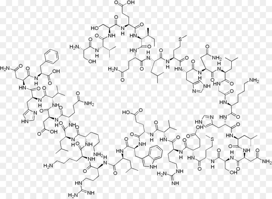 Le tériparatide l'hormone Parathyroïdienne l'Ostéoporose glande ...