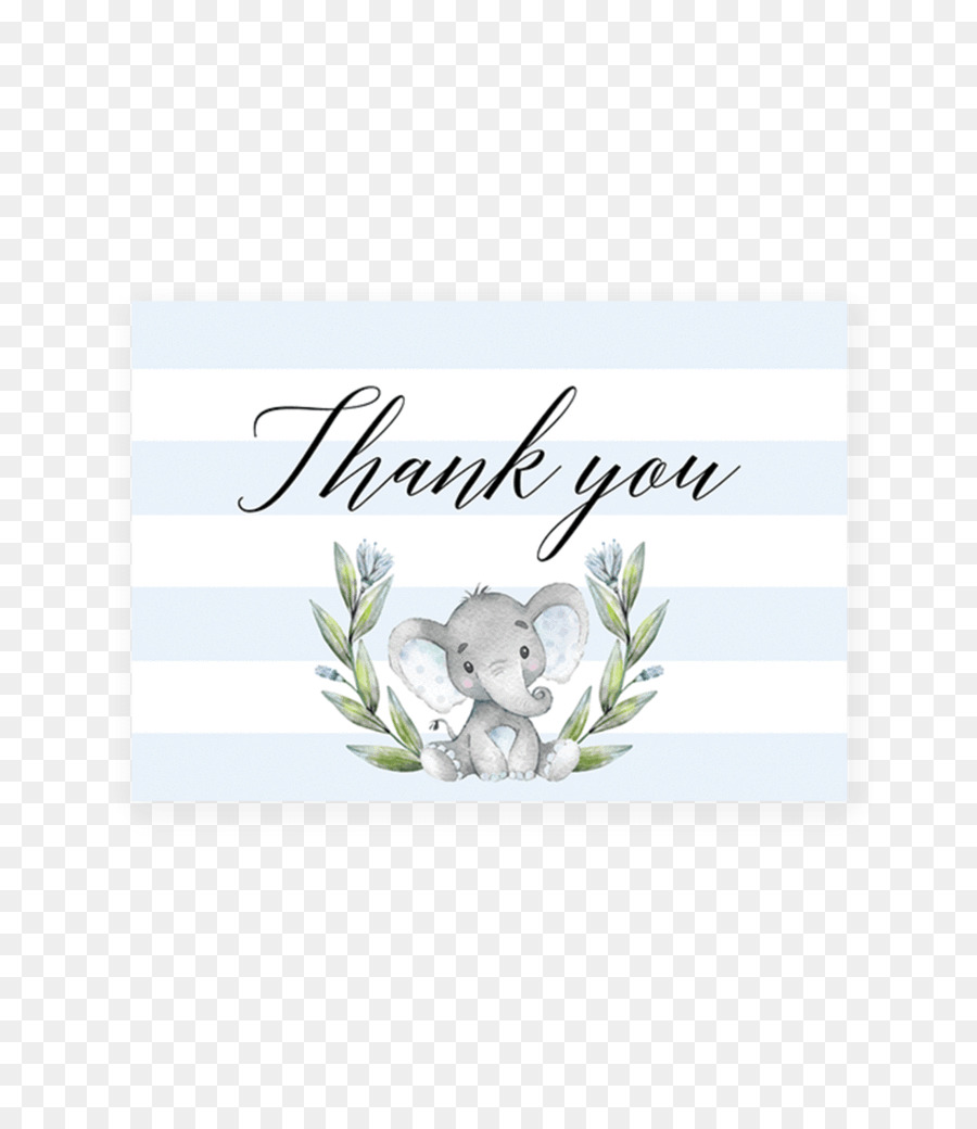 Baby Shower Greeting  Note Cards Letter Of Thanks Youtube Infant