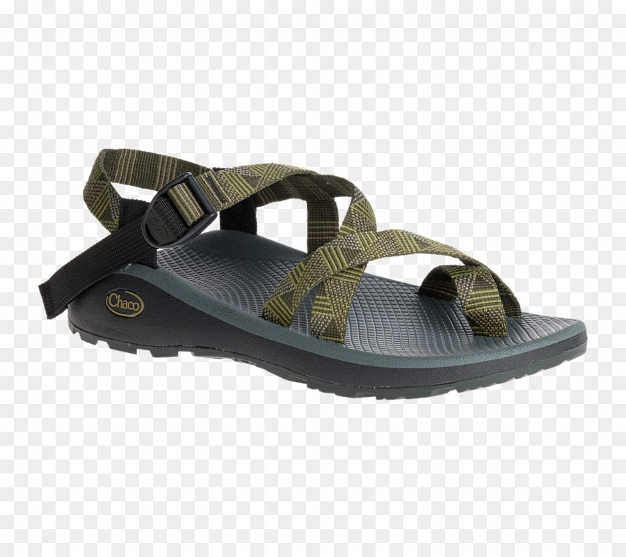8307f5b74b6c Chaco Rainbow Sandals Flip-flops Shoe - sandal png download - 790 790 -  Free Transparent Chaco png Download.