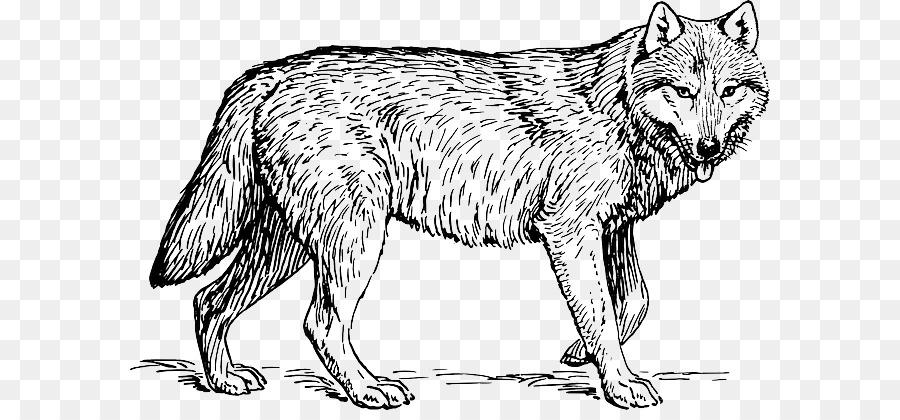 Libro Da Colorare Cucciolo Di Cane Di Disegno Per Adulti Carnivori