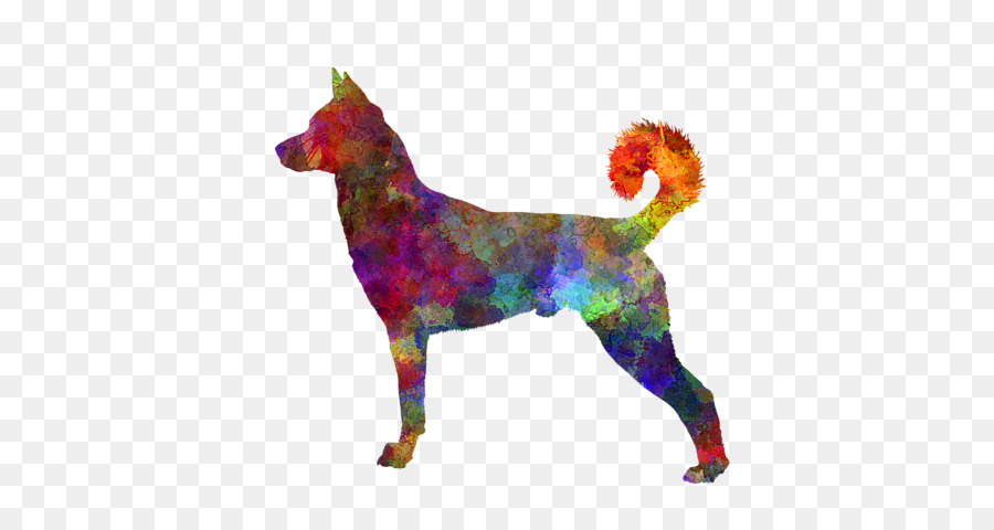 Kanaan Anjing Bernese Gunung Anjing Chinese Crested Dog Gusi