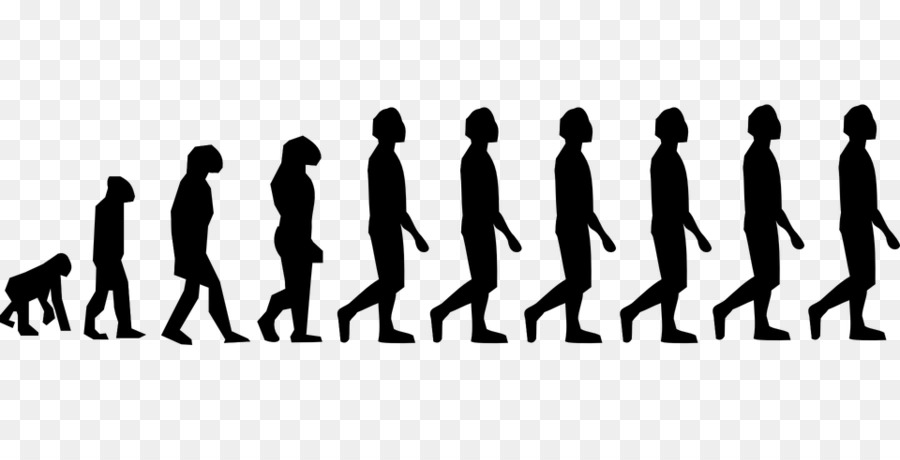 natural selection and the evolution of the homo sapiens How our species came to be and changed history and evolution first humans episode 1 - homo sapiens becoming a human - продолжительность: 51:31 james t deramus 264 558 просмотров tracing our genetic ancestry | natural history museum - продолжительность: 8:47.