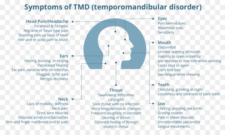 Temporomandibular Joint Text png download - 1000*591 - Free