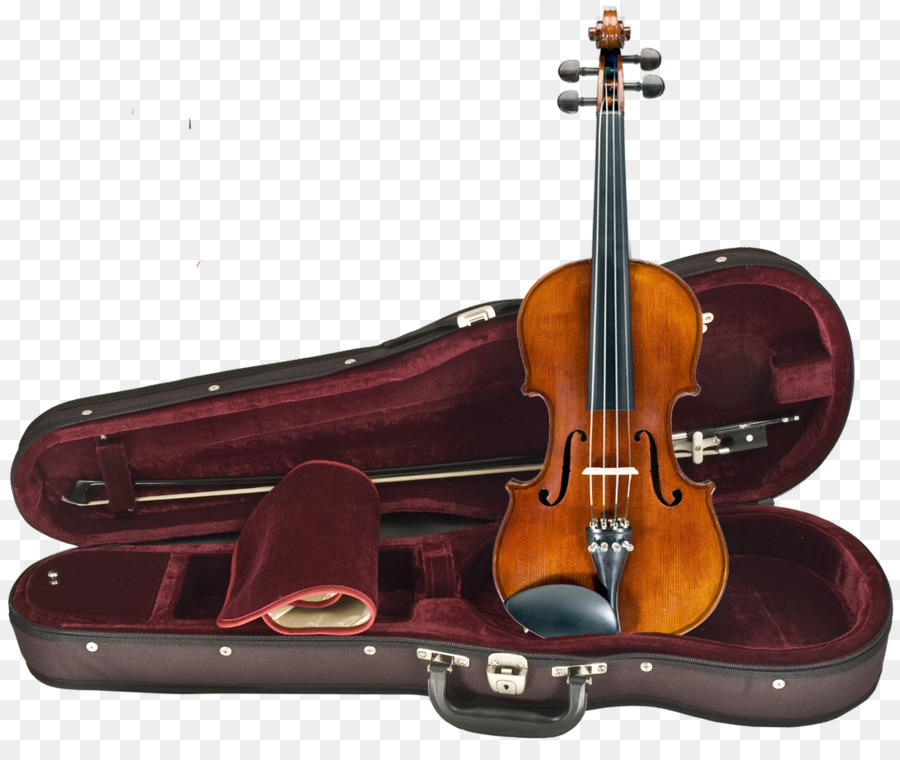 an introduction to viola an instrument from the violin family Violin information - an introduction to the violin for those new to the violin, let's start with some introductory violin information to get aquainted with the instrument the violin is a real family instrument - it has two bigger siblings, the viola and violincello.