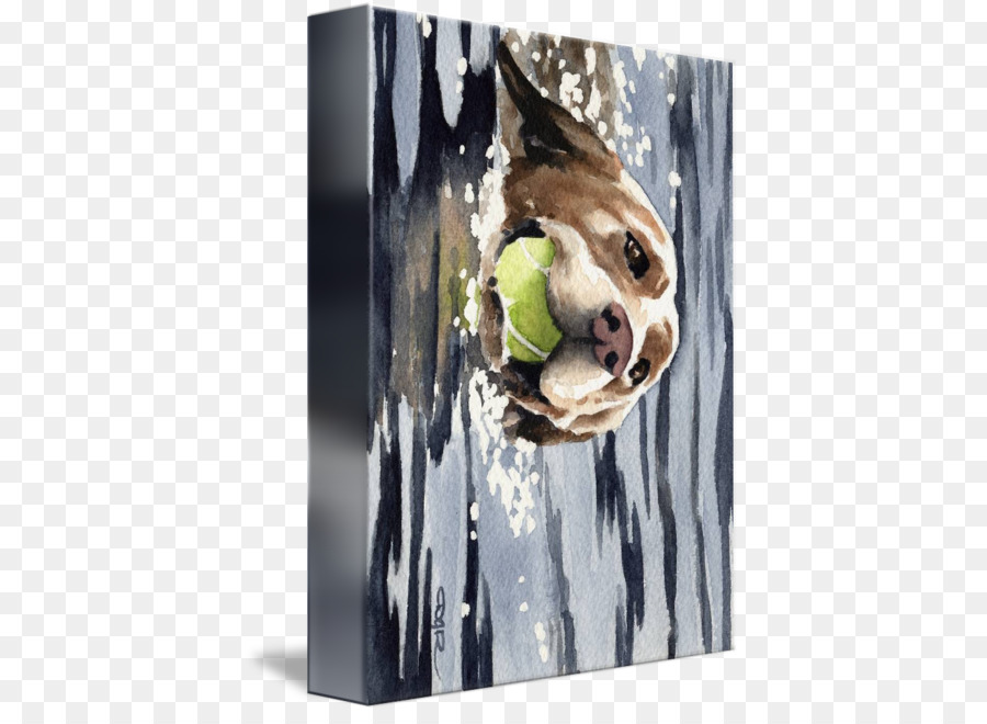Dálmata perro Labrador Retriever camilla Marcos de fotos de la Lona ...