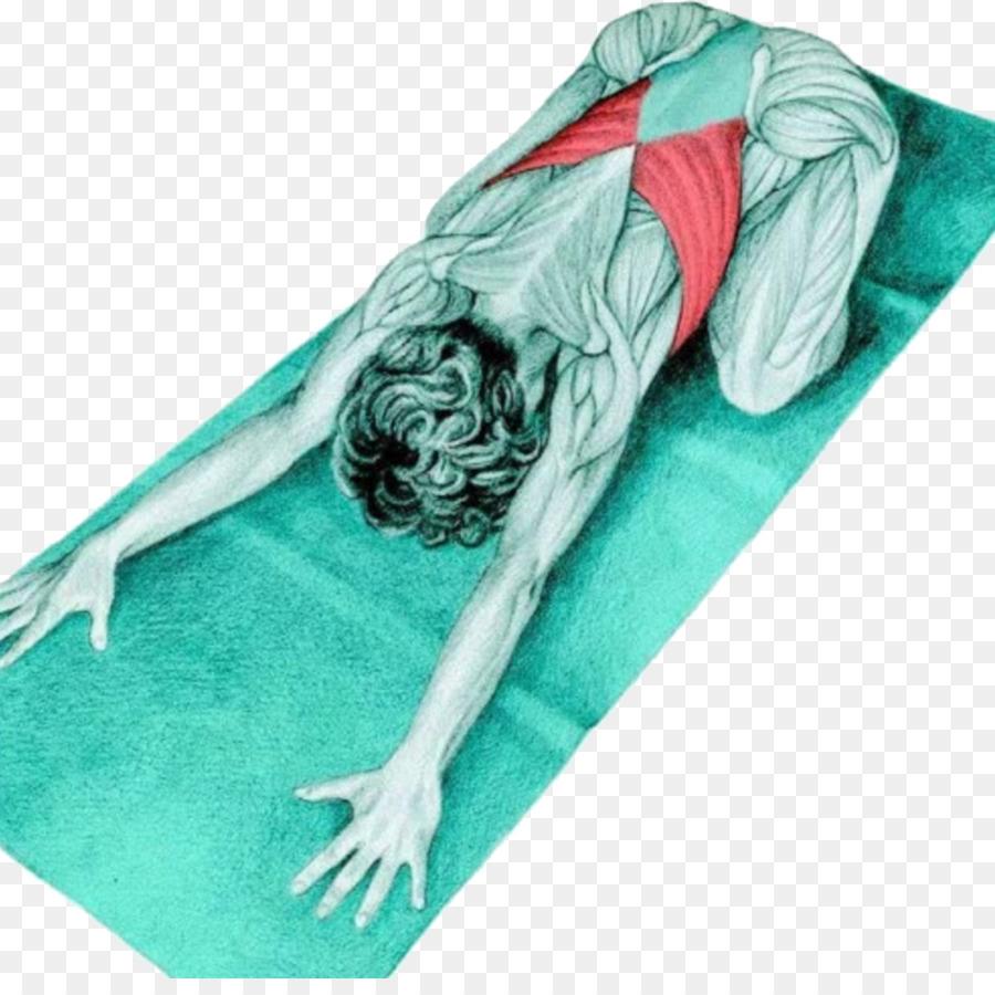 Yoga Anatomy Blsana Stretching Supta Virasana Latissimus Dorsi