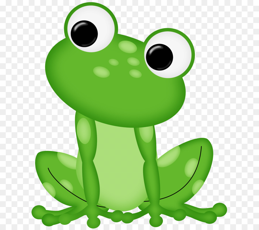 frog clip art rana png download 689 800 free transparent green rh kisspng com clipart images of frogs clipart of frogs and toads