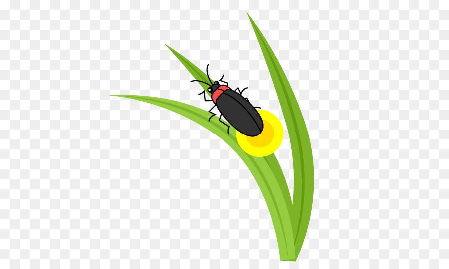 Kumbang Kumbang Firefly Clip Art Lain Lain Unduh Serangga