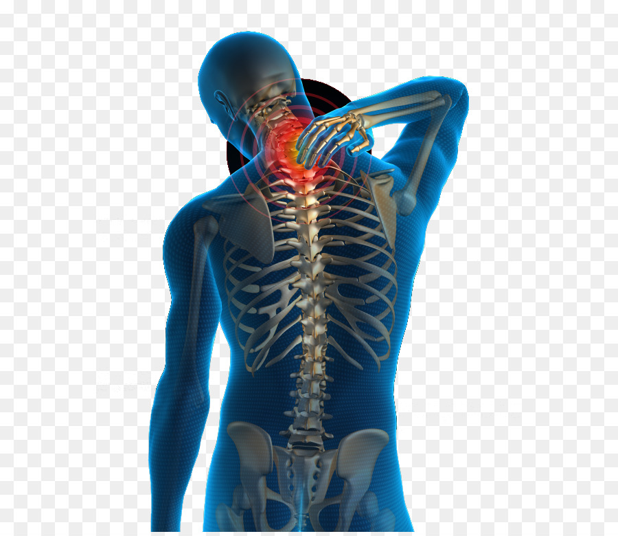 Neck Pain Low Back Pain Human Back Physical Therapy Health Png