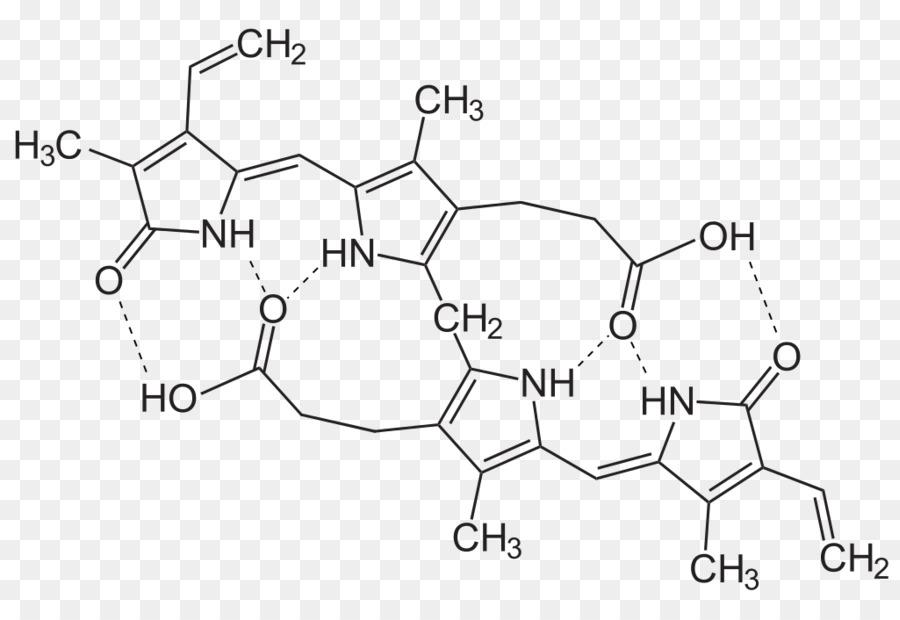 m/02csf Psicología de la Nefrona sistema Excretor - la ictericia ...
