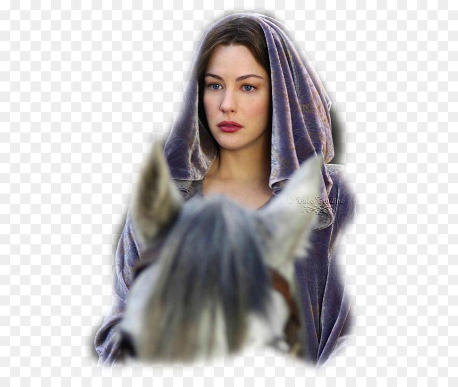 Liv Tyler Arwen In Der Herr Der Ringe Fellowship Of The Ring Der