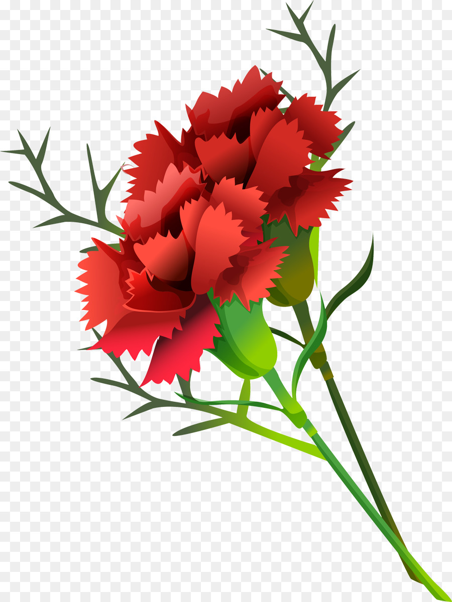Carnation Paper Cut Flowers Collage Flower Bouquet Collage Png