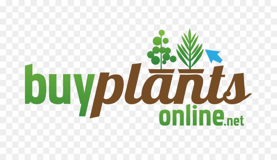 Nursery plant bog garden ornamental grass plant png download nursery plant bog garden ornamental grass plant workwithnaturefo