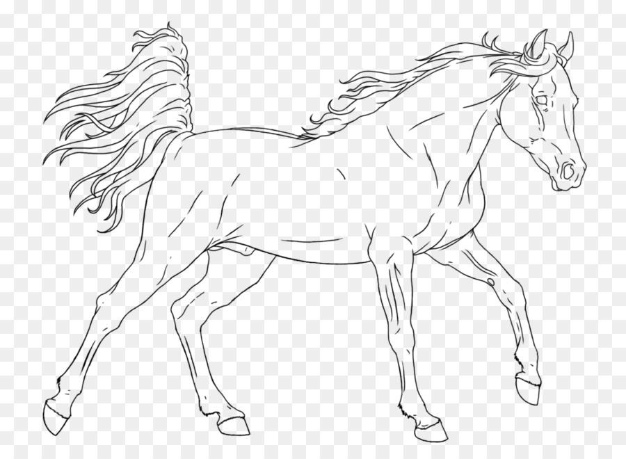 Caballo de Crin de libro para Colorear Potro Potro - caballo png ...