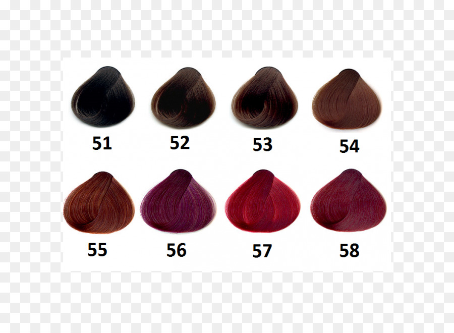 Hair Coloring Human Hair Color Palette Hair Png Download 650650