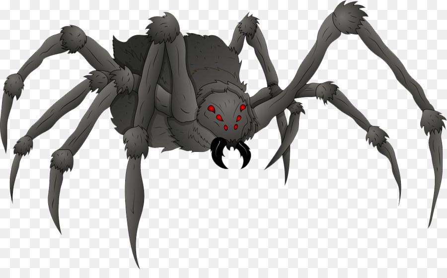 Spider Drawing Spider Png Download 1074 648 Free