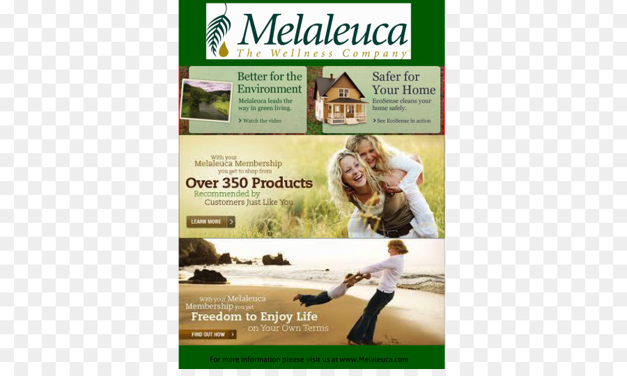 Melaleuca Products Charitable Organization Company Adwords In 2017