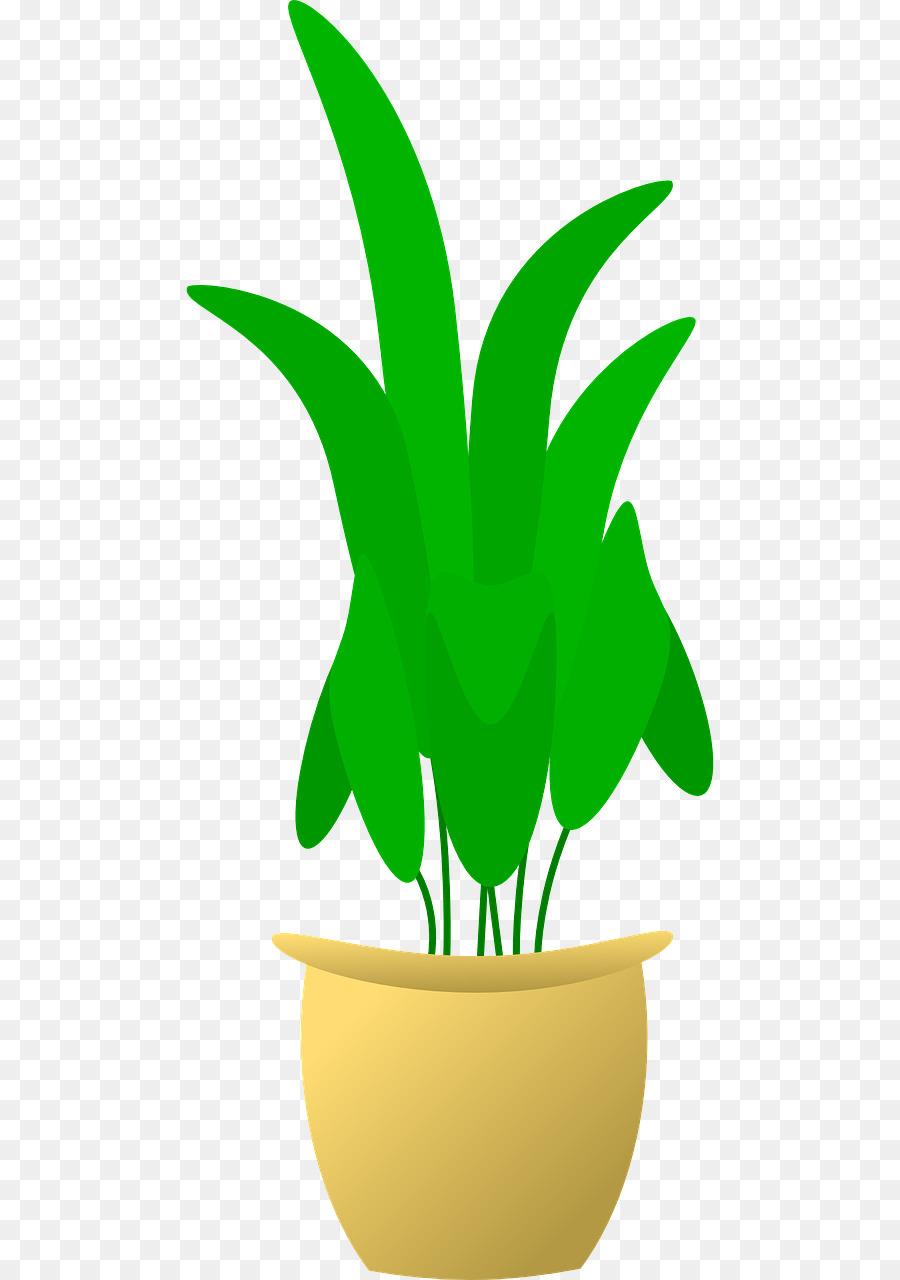 Blumentopf Pflanze clipart - Anlage png herunterladen - 640*1280 ...