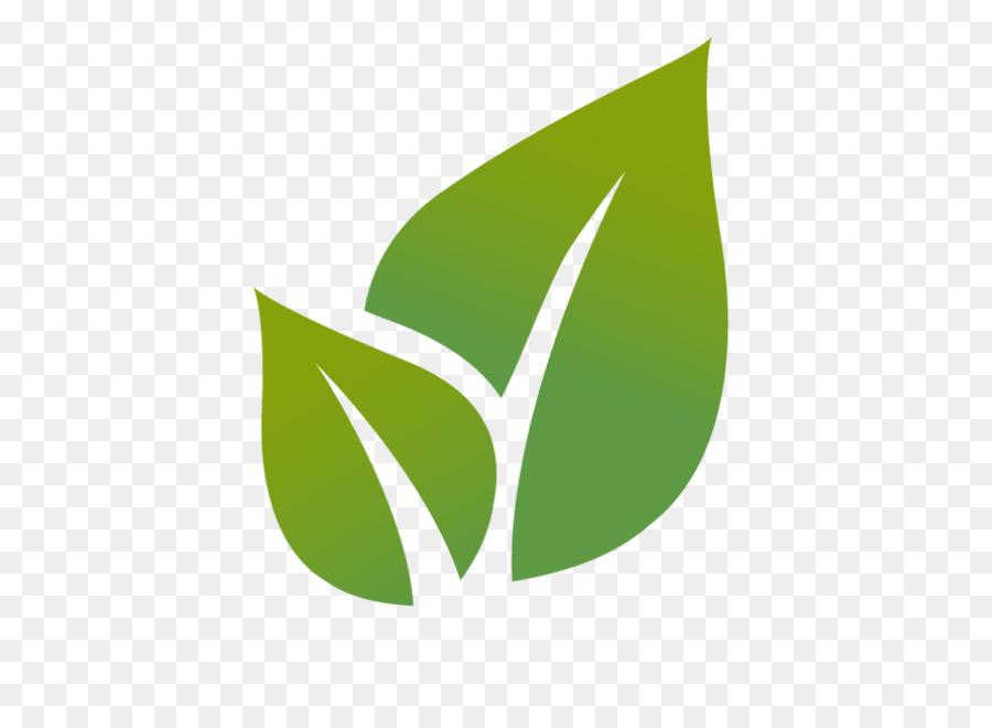 Chevrolet Environmental Management Revision Guide For The Nebosh