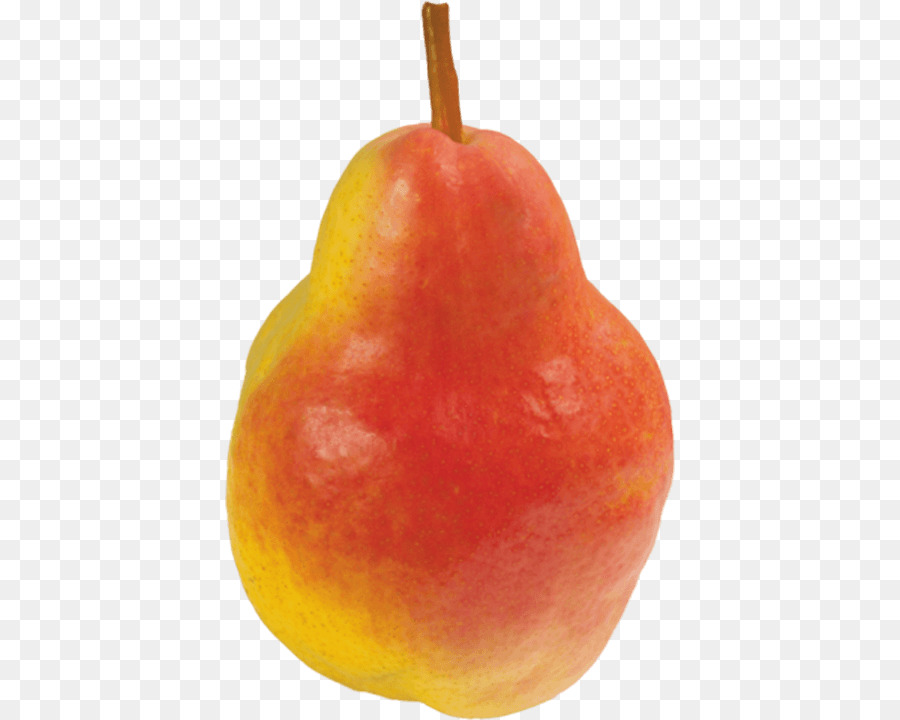 Pear Stock Photography Pear Png Download 450720 Free