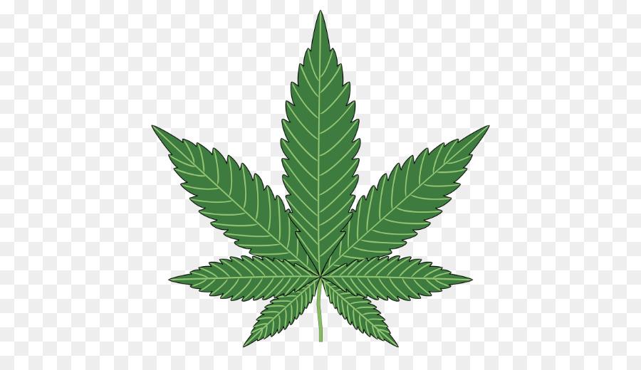 Cannabis Ohne Thc