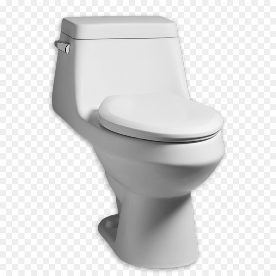 Dual flush toilet American Standard Brands American Standard ...