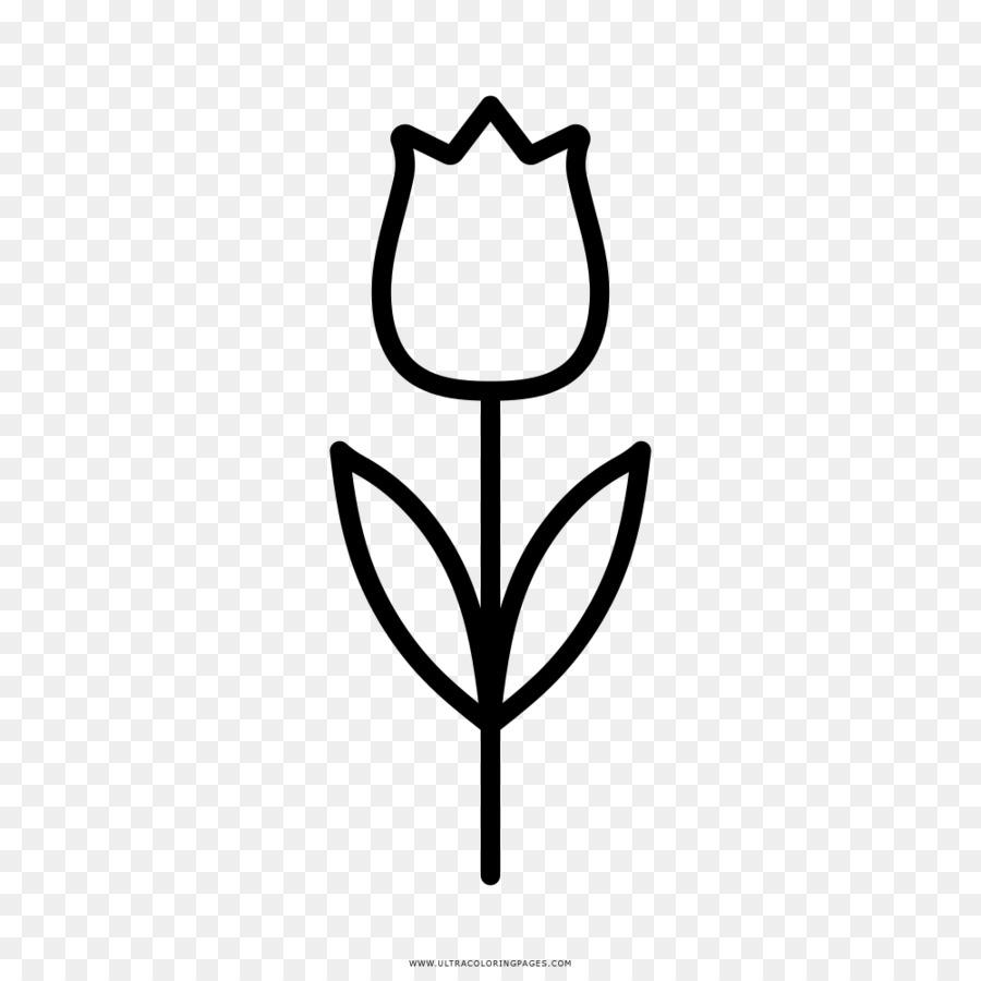 Flor de Tulipán libro para Colorear, Dibujo de - flor png dibujo ...