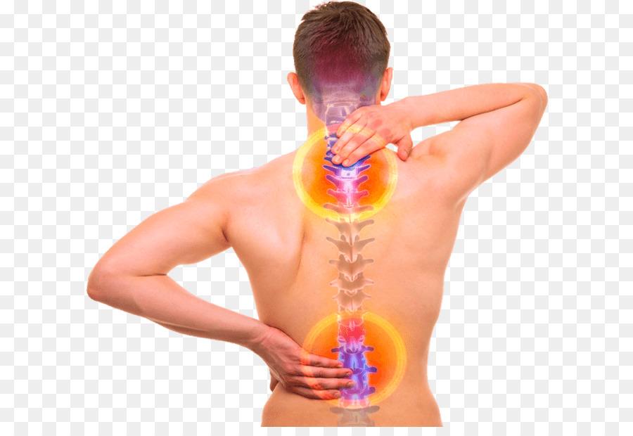 Dolor de espalda, columna Vertebral, espalda Humana Hueso al cuerpo ...