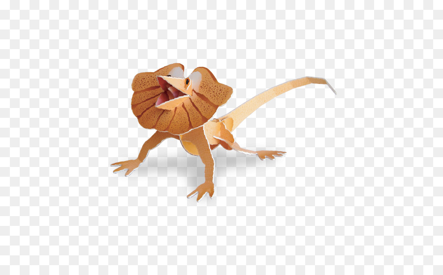 Con volantes cuello lagarto de Reptiles de Australia Cuello de ...