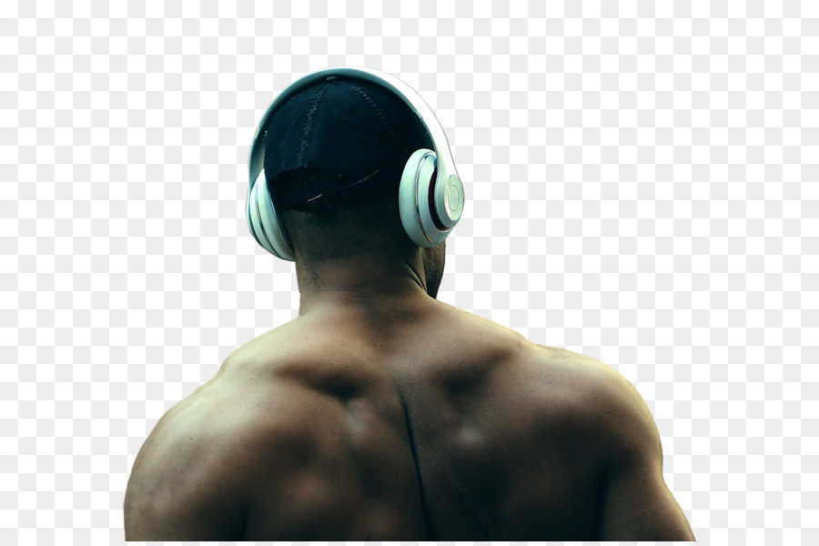 Exercise Muscle Human Back Weight Training Muscular System Muscles
