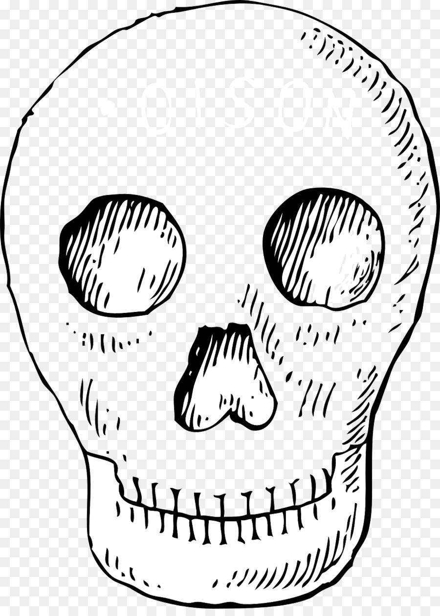 Human Skull Symbolism Skull And Crossbones Poison Clip Art Skull