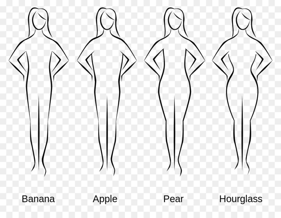 Cuerpo femenino de forma de Mujer cuerpo Humano Somatotipo y ...