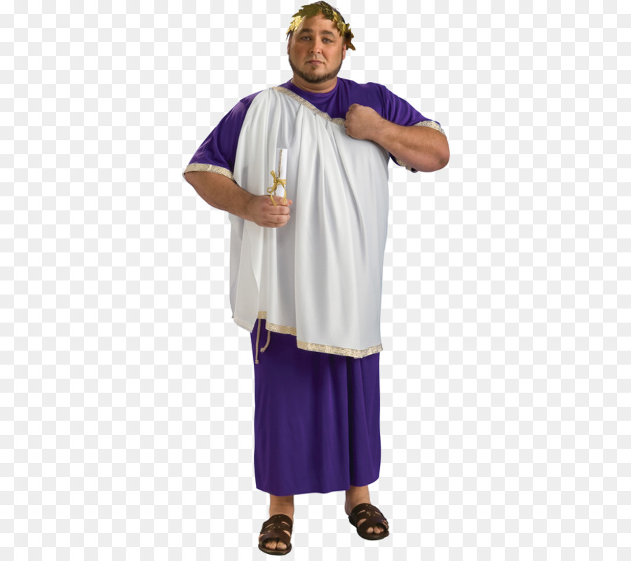 Julius Caesar Robe Ancient Rome Costume Toga - purple  sc 1 st  PNG Download & Julius Caesar Robe Ancient Rome Costume Toga - purple png download ...