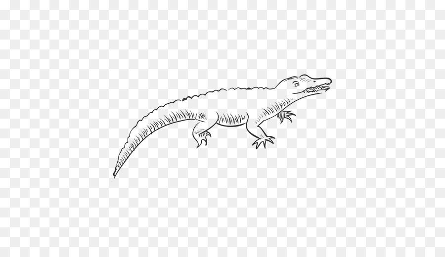 7100 Koleksi Gambar Hitam Putih Dinosaurus HD Terbaru