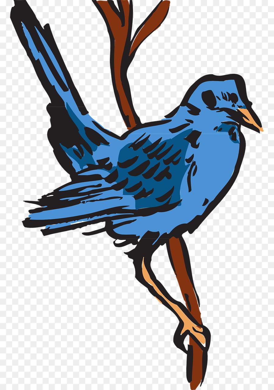 De Plumas De Aves De Pico Ala - Aves Formatos De Archivo De Imagen ...