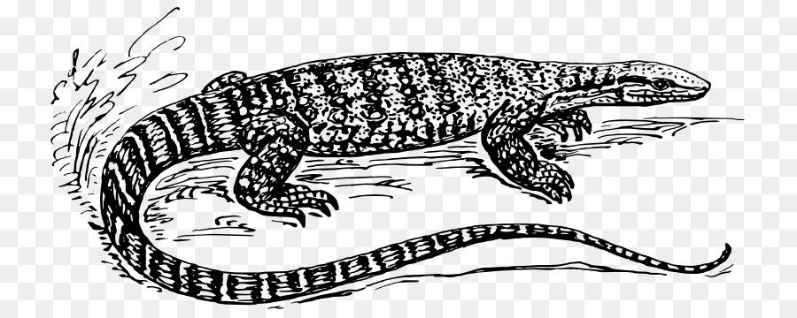 Lagarto dragón de Komodo Común Iguanas, Reptiles Clip art - lagarto ...