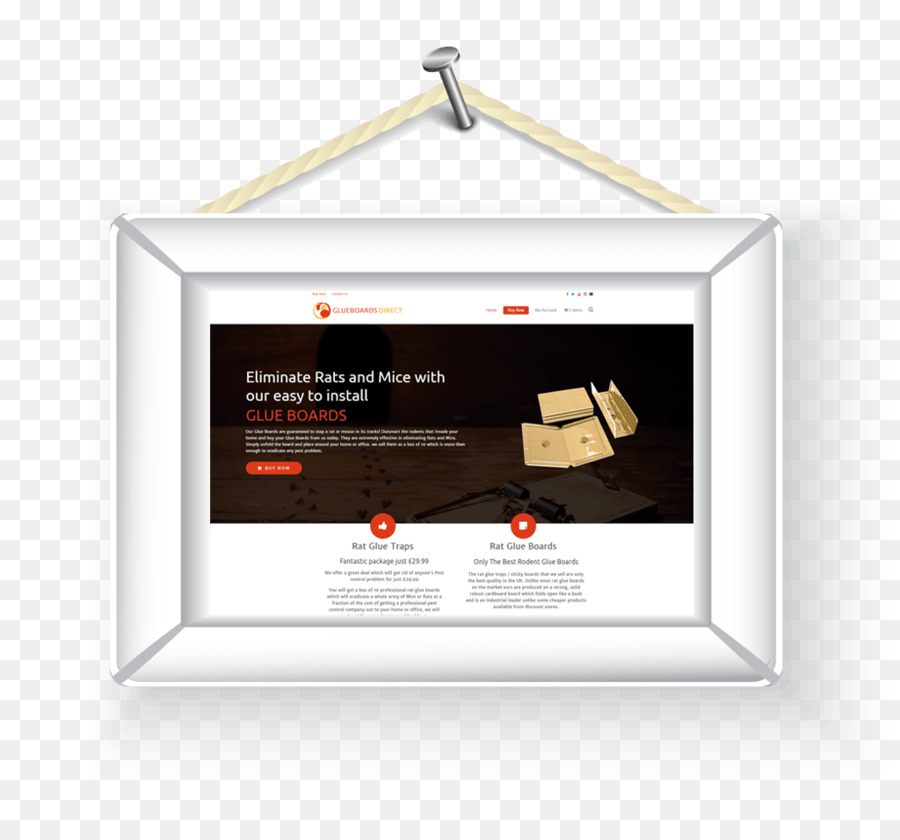 Picture Frames Wall - web design png download - 1024*950 - Free ...