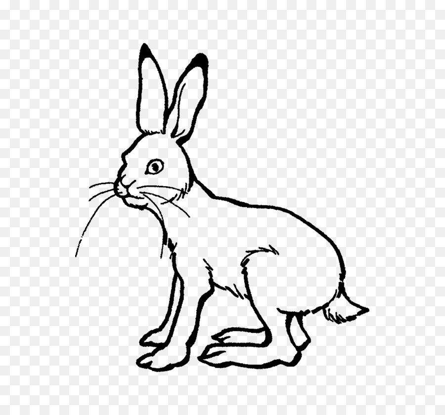 La liebre ártica de La Tortuga y la Liebre, liebre Europea conejo ...