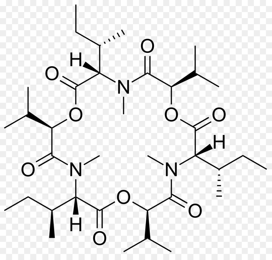 Nucleic Acid Structure Macromolecule Chemistry Others Png Download