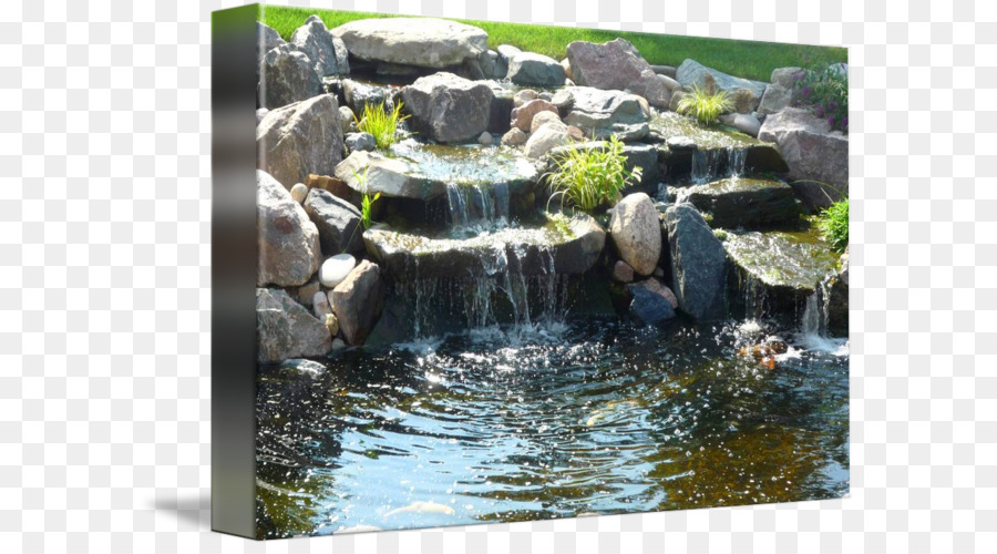 Garden Pond Koi Pond Waterfall   Koi Pond