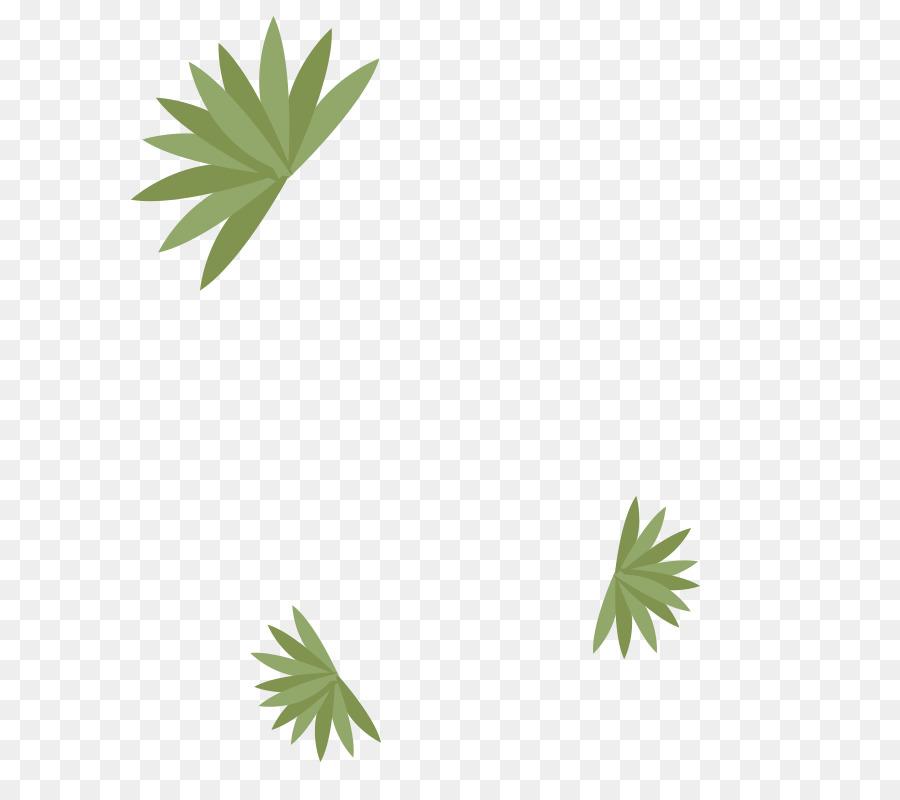 Leaf Hemp Plant stem Line Tree - Leaf png download - 800*800