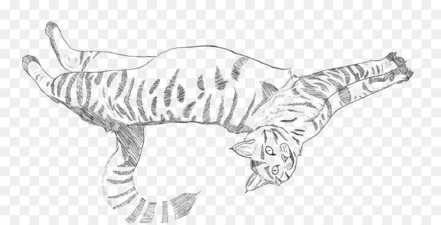Tiger Cat Canidae Paw Sketsa Harimau Unduh Garis Seni Putih