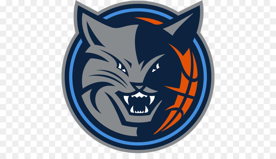 Charlotte Hornets 201314 Charlotte Bobcats Season Nba 201112