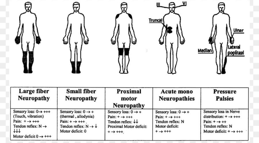 Peripheral neuropathy Chronic inflammatory demyelinating polyneuropathy Diabetic neuropathy Neuropathic Pain - Neuromuscular Disease