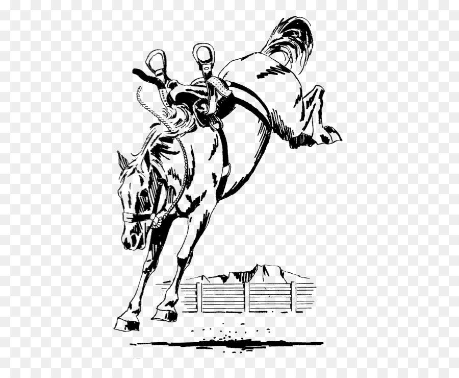 American Saddlebred Frisone Cavallo Stallone In Controtendenza Bronc