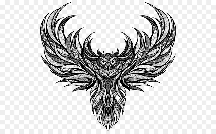 Owl Drawing Owl Png Download 600553 Free Transparent Owl Png