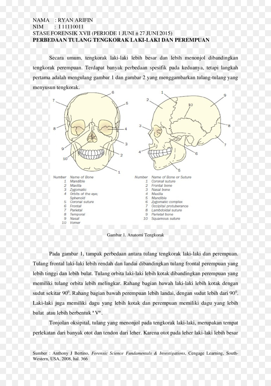 Homo sapiens bone document human behavior design png download homo sapiens bone document human behavior design malvernweather Choice Image